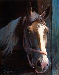 Julie_bell_jb1031_dark_horse_Small.jpg