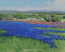 ben_bauer_bb1057_texas_spring_wm_small.jpg