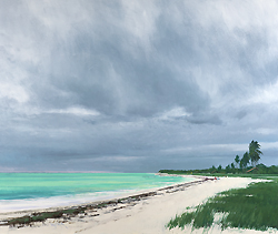 ben_bauer_bb1075_sandspur_beach_florida_small.jpg