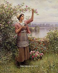 daniel_ridgway_knight_a3246_gathering_roses_wm_small.jpg