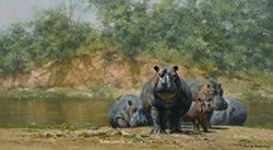 david_shepherd_e1495_hot_hippos_wm_small.jpg