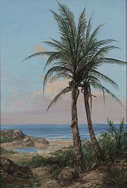 erik_koeppel_ek1044_palms_in_evening_light_small.jpg