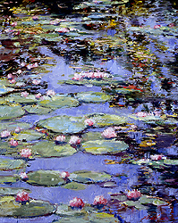 heidi_coutu_c1002_giverney_reflection_small.jpg