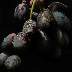james_neil_hollingsworth_jh1027_black_grapes_small.jpg