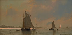 william_davis_wd1005_fishing_schooner_at_work_small.jpg